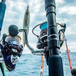 Roussillon fishing Panier