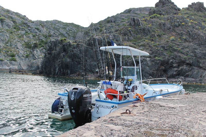 Catalina Roussillon Fishing